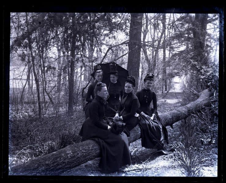 Group on fallen tree. Bartram's Garden. Mrs Shoemaker, Bird & Minnie Tyson Shoemaker, Minnie Kimber & Bess [graphic].