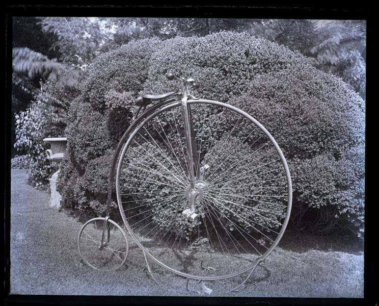 My bicycle, side view in front of box bush, (Miss Annes) [graphic].