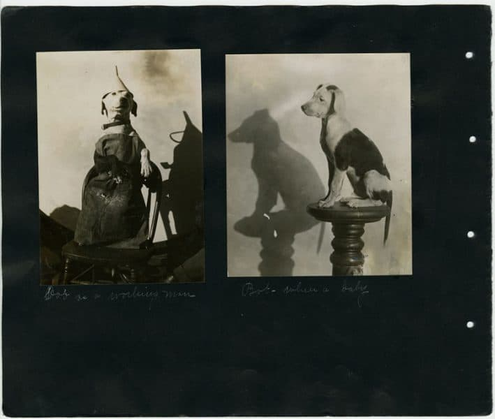 William Rau. Bob as a Working Man and Bob when a Baby, gelatin silver photographs, ca. 1910.