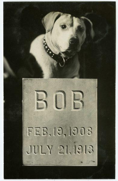 William Rau. Memorial for Bob, gelatin silver photograph advertising card, ca. 1913.