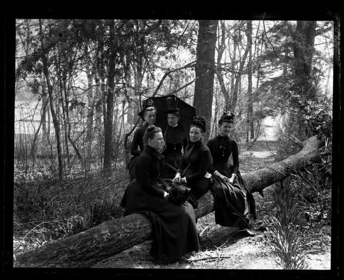 Morris, Marriott Canby, 1863-1948, photographer. Group on fallen tree. Bartram's Garden. Mrs Shoemaker, Bird & Minnie Tyson Shoemaker, Minnie Kimber & Bess. [Philadelphia] April 28, 1888.