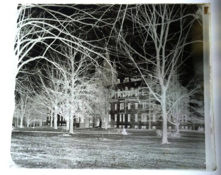 Morris Collection. Negative image showing trees and a building.