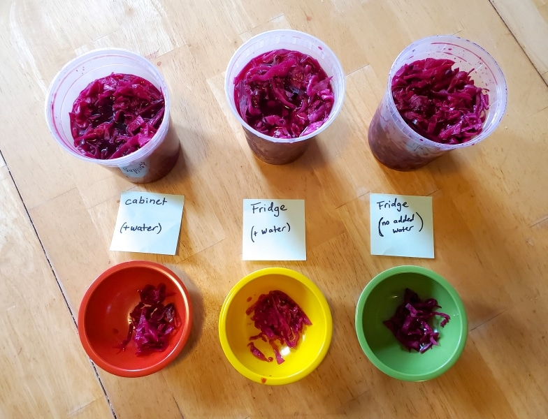Three containers of pickled cabbage left in different environments, the results of a pickling experiment