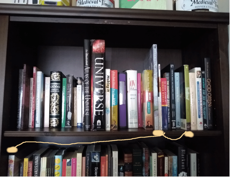 Detail of cataloger Em Ricciardi's book shelf arranged with the Dewey system showing three art books separated by the method
