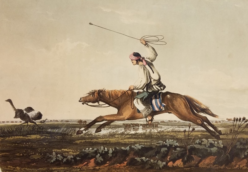 Man hunting a bird on horseback from Vidal, Emeric. Picturesque Illustrations of Buenos Ayres and Monte Video. London: R. Ackermann, 101 Strand, 1820. Balling Ostriches. Pampa Indians.