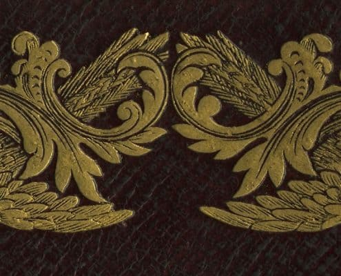 Detail of gilt birds from book cover.