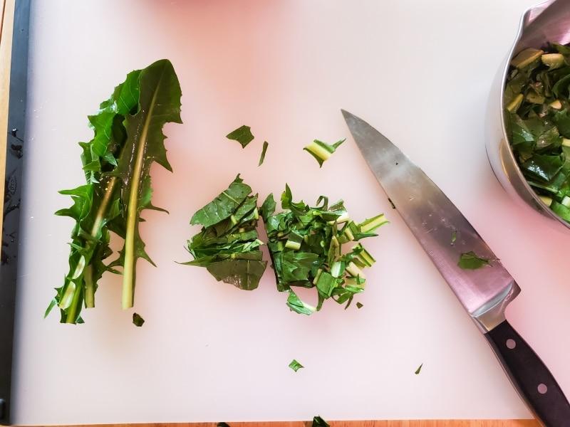Chopping dandelion greens